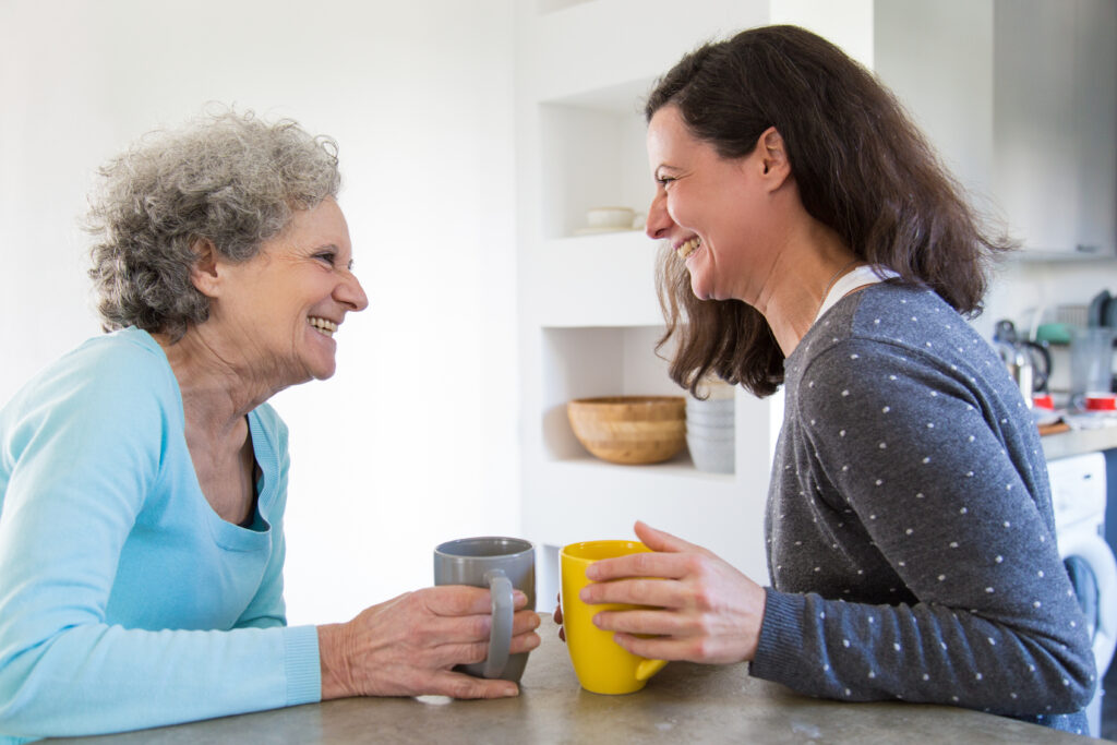 elderly lady talking to carer companionship care